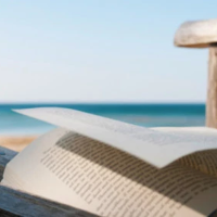 Militando el ajuste literario