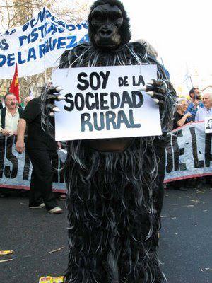 """Que Es un """" Gorila """" ? pasa,sentate .i. - Apuntes y mon... en Taringa!"""